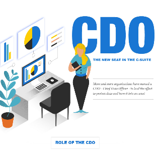 Chief Data Officers
