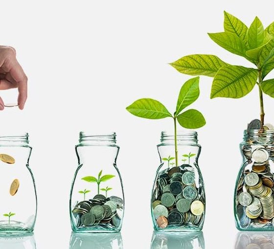 Fix Deposit as a Popular Choice for Investment
