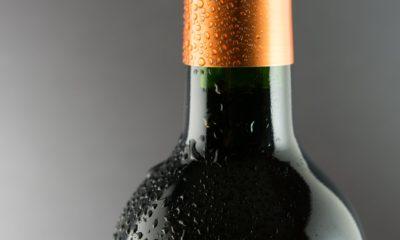 6 Most Popular Bolgheri Wine