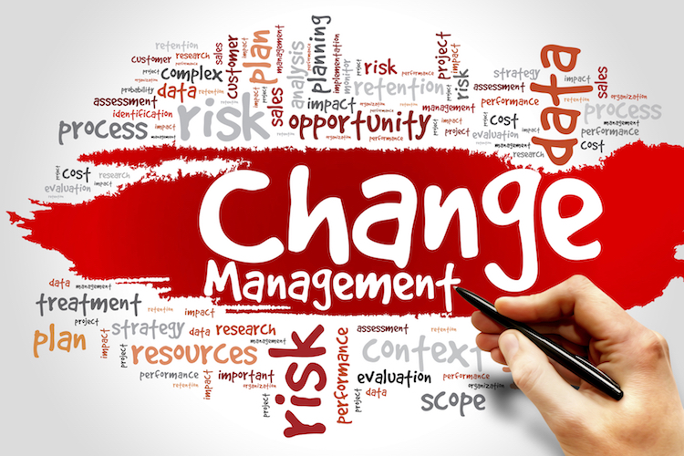 Organizational Change: 5 Actionable Tips for Meaningful Transformation