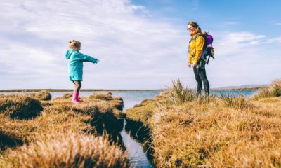 5 Best Family Vacations and Trips for All Ages