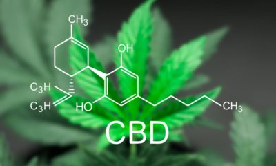 All Known Benefits of CBD