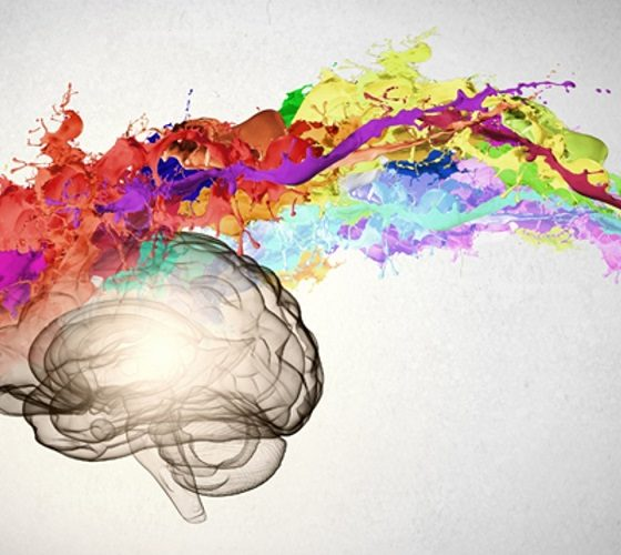 7 Keys to Developing a Creative Brain
