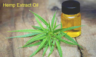 Benefits of Hemp Extract Oil
