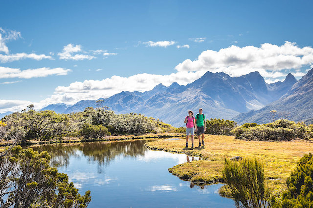 Things to Know When Going on a Vacation in New Zealand
