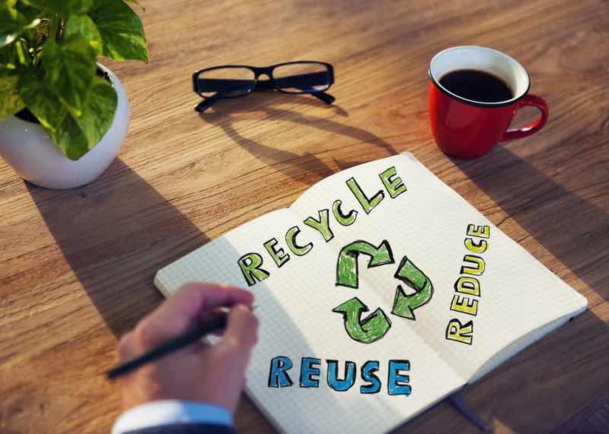 5 Tips to Move Your Business in an Eco-Conscious Way