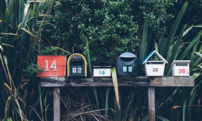 How To Send Effective Bulk Emails Without Getting Marked As A Spammer