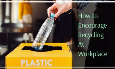5 Practical Ways to Encourage Recycling in Workplace