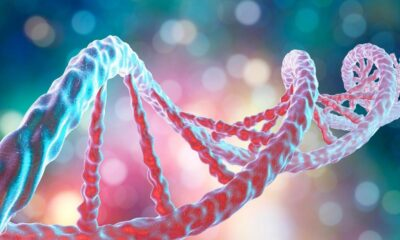 Can Your Mindset Affect Your DNA