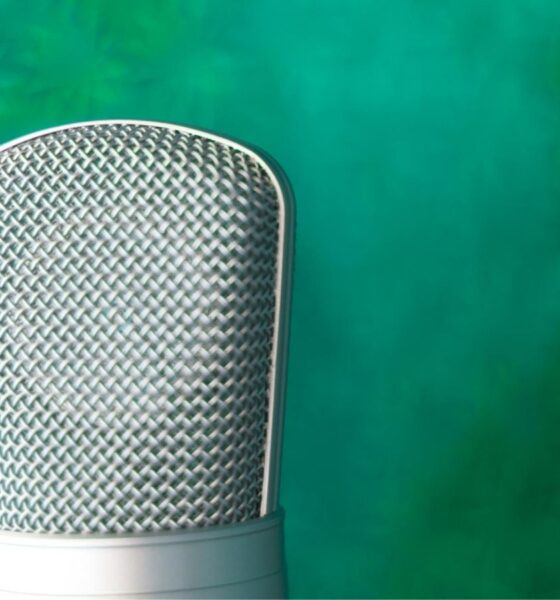 How Dubbing is Seizing the Streaming Market