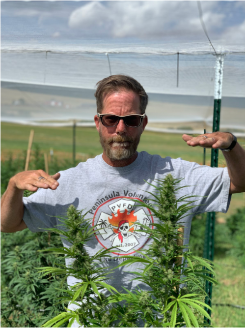 Super Natural Farms Is the CBD Industry's Emerging Leader