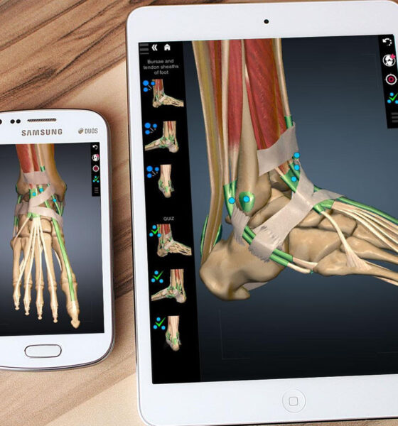 6 Apps To Learn Anatomy In 3d