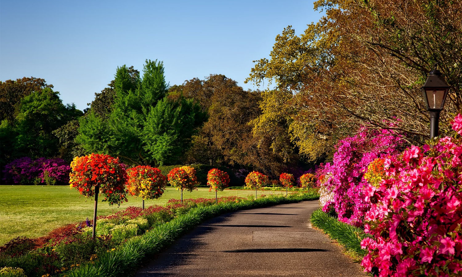 The Effects of Landscape Design on Commercial Real Estate
